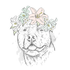A pedigreed dog in a wreath of flowers. Pitbull. Vector illustration.