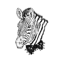A zebra in a tie. Vector illustration.