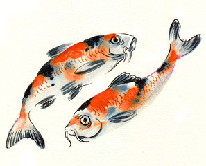Ink and watercolor sketch of a pair of koi fishes
