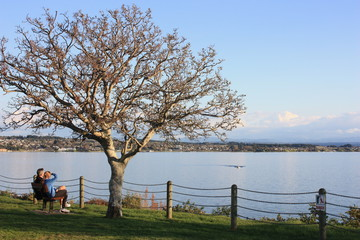 View of Lake Taupo