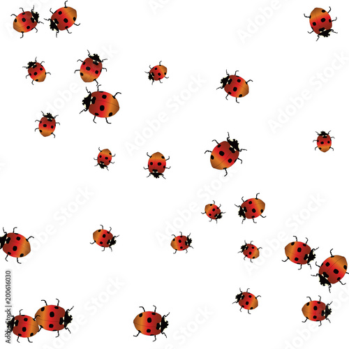 delicate background with ladybugs trendy template for a postcard