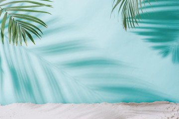 Summer concept. Palm tree shadow on a blue  background. Wall mural