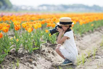 チューリップの写真を撮る女の子