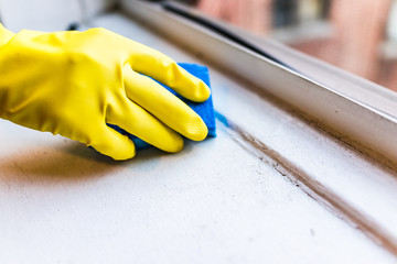 Yellow gloves hand cleaning dust, dirt on windowsill with blue sponge by window in urban apartment in New York City NYC background