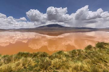 Colorado lagoon, Altiplano, Bolivia