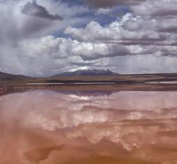 Colorada lagoon, Altiplano, Bolivia