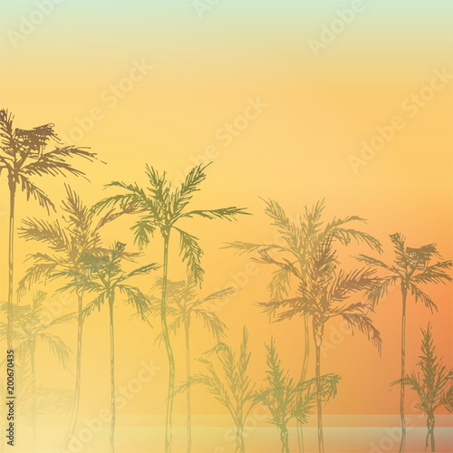palm trees on the beach palm forest by the sea palm trees at