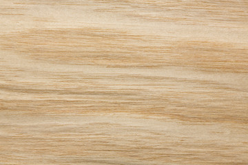 Charming light beige veneer texture for your new design.