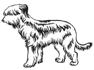 Decorative standing portrait of Briard vector illustration