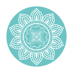 colorful and circular mandala mandala vector illustration design