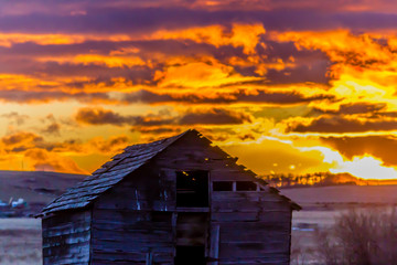 Stunning sunrise over rustic out building, Springbank, Alberta, Canada