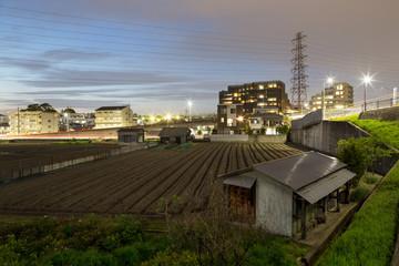 Small urban farm next to apartment buildings in Suita, Esaka