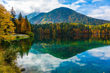 Picturesque reflections multi-colored woods