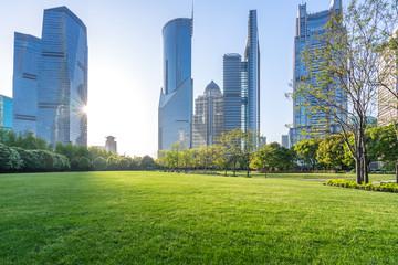 Fototapeta green lawn with modern building