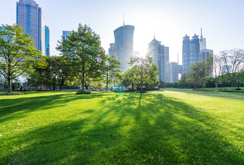 Wall Mural - green lawn with modern building