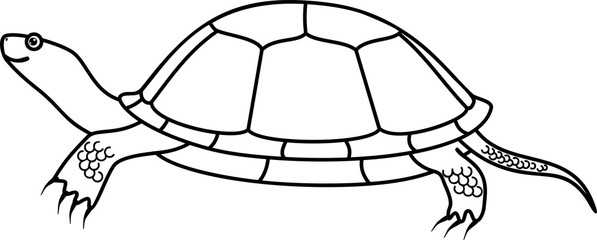 European pond turtle coloring page