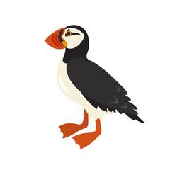 Cartoon puffin icon on white background.