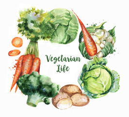 Hand-drawn watercolor food illustrations. Isolated drawings of the fresh vegetables - cabbage, cauliflower, carrot, potatoes and broccoli