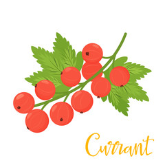 Red cartoon currant isolated on white background