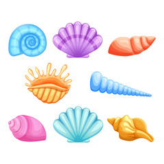 Colorful seashells  in cartoon style isolated on white background. Vector set.