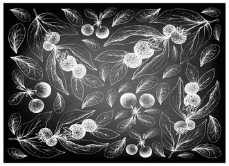 Hand Drawn Ceylon Gooseberries and Bog Bilberries on Chalkboard