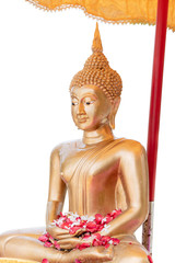 Golden Buddha statue with water droplets in Songkran Festival in Thailand. Isolated on white background.