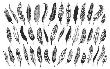 Rustic decorative feathers. Hand drawn vintage vector design set