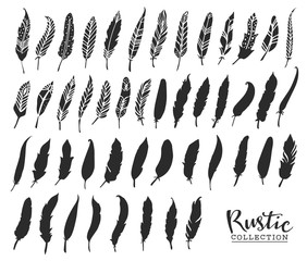 Hand drawn vintage feathers. Rustic decorative vector design elements.