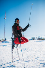 Skier posing on skis stuck with noses in the snow