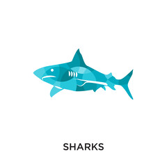 sharks logo isolated on white background for your web, mobile and app design