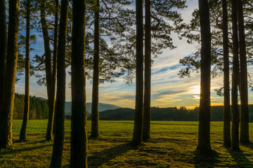 Germany, Sunset in the middle of the black forest nature landscape near Freiburg