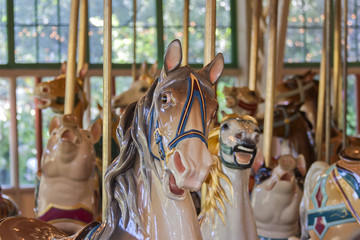 Carousel, all about the ride