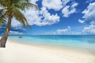 Tropical scenery with amazing beaches of  Mauritius island