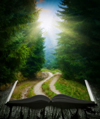 Way through the forest on the book