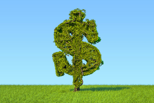 Money tree in the shape of a dollar sign on the green grass against blue sky, 3D rendering
