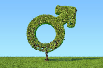 Tree shaped as male gender symbol on the green grass against blue sky, 3D rendering