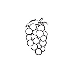 Bunch of grapes vector hand drawn outline doodle icon. Grape vector sketch illustration for print, web, mobile and infographics isolated on white background.