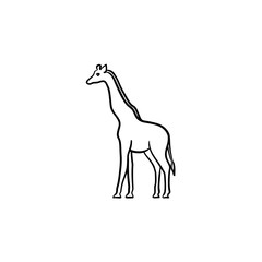 Giraffe hand drawn outline doodle icon. Africa animal - giraffe vector sketch illustration for print, web, mobile and infographics isolated on white background.