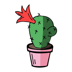 flat vector illustration of home blossom green cactus in pink pot with shadow