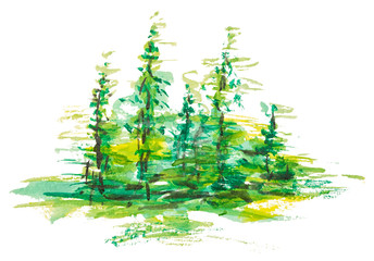 Watercolor group of fir trees green forest landscape, Drawing on white isolated background.