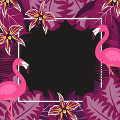 flower flamingo frame 2