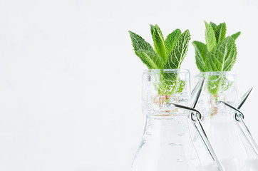Fresh mineral water with mint leaves and sparkling bubbles on white wood board. Summer modern elegant background.