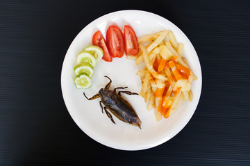 Offer of edible insects on a plate. Fried cockroaches with french fries and vegetable on a plate.