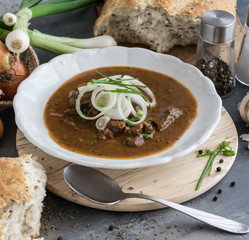 Beef Goulash with onion and home-made bread