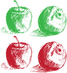Apples. Hand-drawn apples. Silhouette of an Apple. The picture of the Apple. Illustration of an Apple.