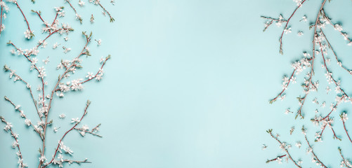 Beautiful Turquoise blue background with spring cherry blossom branches, top view, flat lay, frame. Creative springtime layout, banner or template