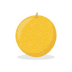 ripe yellow melon on a white background