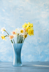 flowers of daffodils of different kinds in a blue vase on a blue background. A heady aroma of spring.