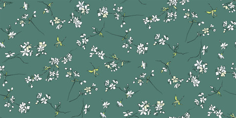 Blooming white cherry. Spring trees in bloom. Snow-white flowers on the branches in the spring