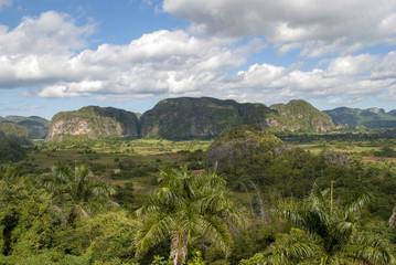 Village at the foot of the mountains in the valley of Vinales in Cuba. Farmers' huts and arable fields. Green palm trees and mogot mountain in the Vinales valley.